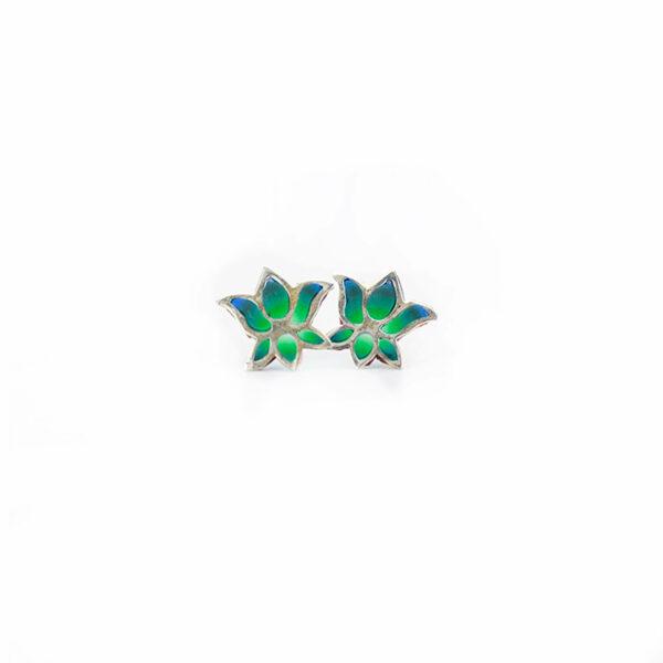 loto turquesa