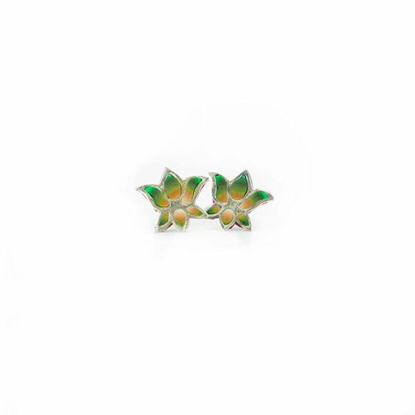 loto verde2